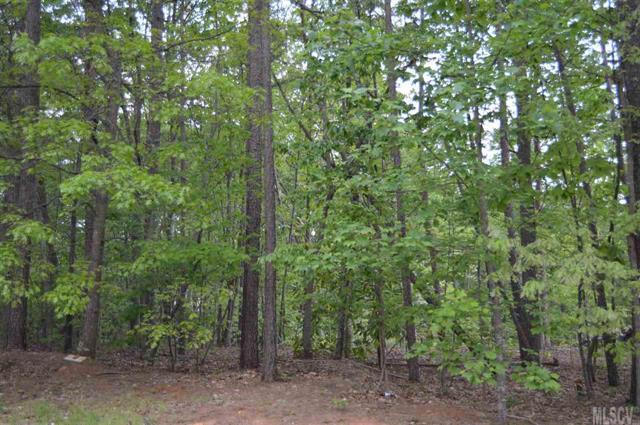 302 Oak Knoll #17, Hildebran, NC 28637 (#9581765) :: LePage Johnson Realty Group, LLC
