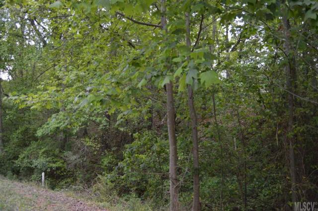 109 Creekside Lane #29, Hildebran, NC 28637 (#9581781) :: LePage Johnson Realty Group, LLC