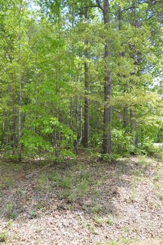 111 Creekside Lane #28, Hildebran, NC 28637 (#9581782) :: LePage Johnson Realty Group, LLC