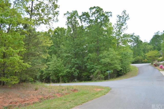 310 Oak Knoll #21, Hildebran, NC 28637 (#9587701) :: LePage Johnson Realty Group, LLC