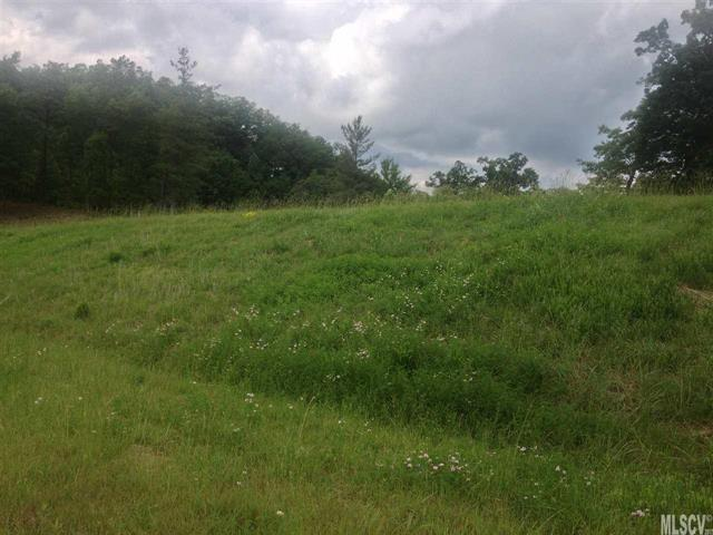 Lot# 533 Roca Vista Drive #533, Lenoir, NC 28645 (#9592134) :: LePage Johnson Realty Group, LLC