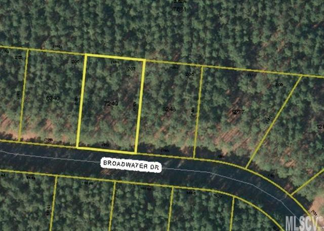 Lot 207 Broadwater Drive #207, Granite Falls, NC 28630 (#9596192) :: RE/MAX Four Seasons Realty