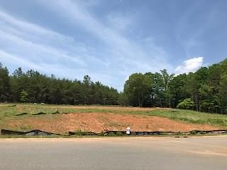 136 White Fawn Circle, Granite Falls, NC 28630 (#9597106) :: Rinehart Realty