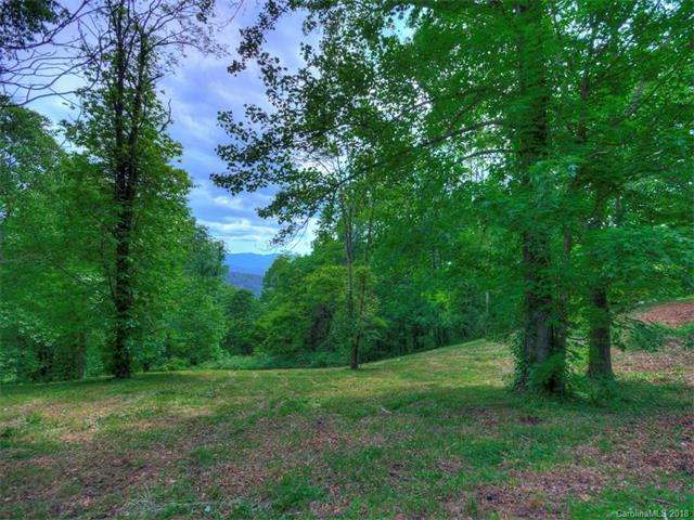 LOT 52 Twisted Trail #52, Waynesville, NC 28786 (#NCM391513) :: Exit Mountain Realty