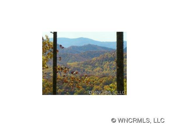 25 Christmas Tree Lane #35, Candler, NC 28715 (#NCM455462) :: Exit Mountain Realty