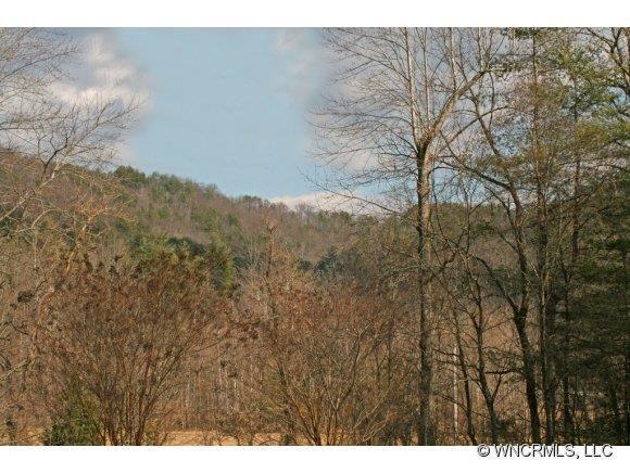 Lot 64 Cedar Creek Road Road #64, Lake Lure, NC 28746 (#NCM481648) :: Mossy Oak Properties Land and Luxury