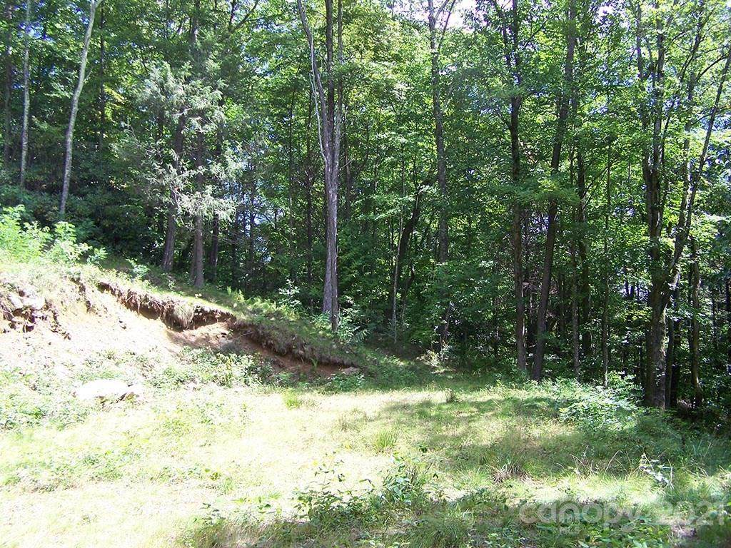 1491 Winding Creek Drive - Photo 1