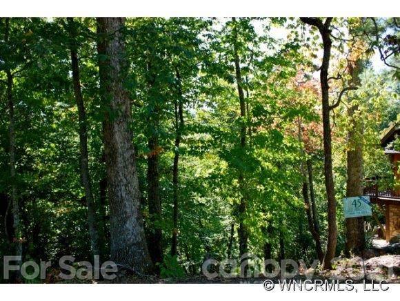 10 Whitman Lane #41, Black Mountain, NC 28711 (#NCM525603) :: Home and Key Realty
