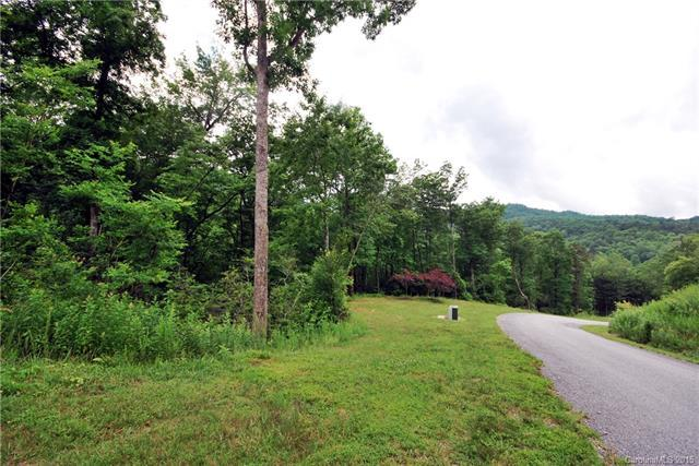 6 Kelly Mountain Road #6, Brevard, NC 28712 (#NCM542151) :: Rinehart Realty