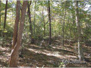 45 Bent Tree Drive, Rutherfordton, NC 28139 (#NCM550086) :: Carlyle Properties