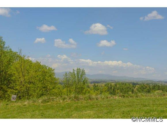 25 Endless View Drive #66, Weaverville, NC 28787 (#NCM556161) :: Odell Realty