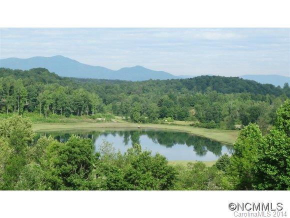 0 Catawba Drive, Tryon, NC 28782 (#NCM558072) :: Leigh Brown and Associates with RE/MAX Executive Realty