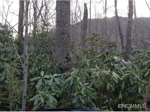 663 lot Kentucky, Montreat, NC 28757 (#NCM559127) :: LePage Johnson Realty Group, LLC