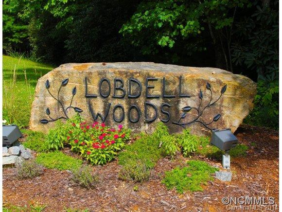 Lot 27 Fern Cove Lane #27, Pisgah Forest, NC 28768 (#NCM570483) :: Roby Realty