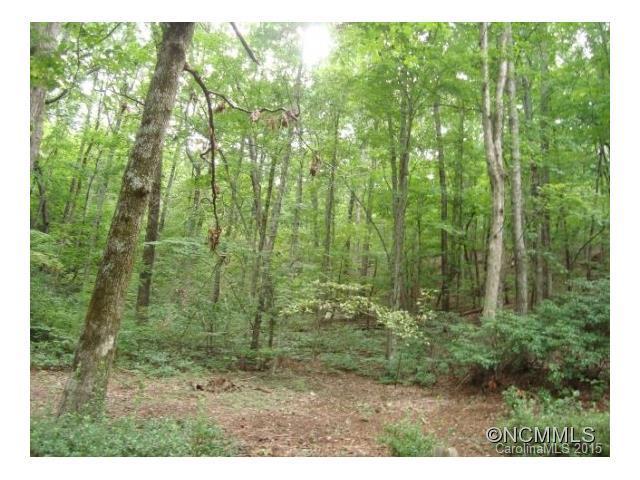 0 Beechwood Drive W, Columbus, NC 28722 (#NCM571400) :: Exit Mountain Realty