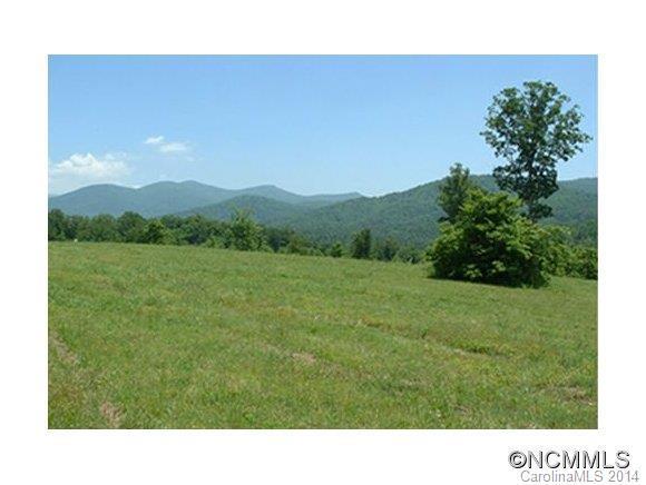 55 Penley Park Drive #54, Weaverville, NC 28787 (#NCM571822) :: Exit Mountain Realty