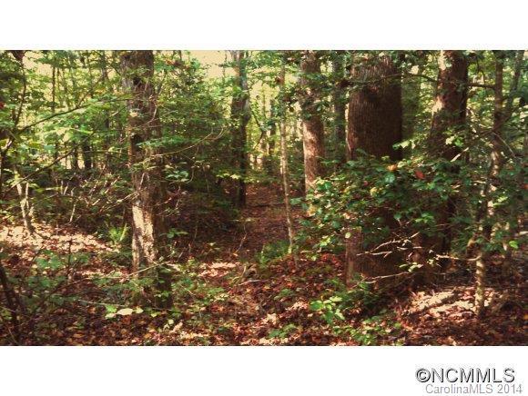 74 Buffalo Creek Road #74, Lake Lure, NC 28746 (#NCM572077) :: Puffer Properties