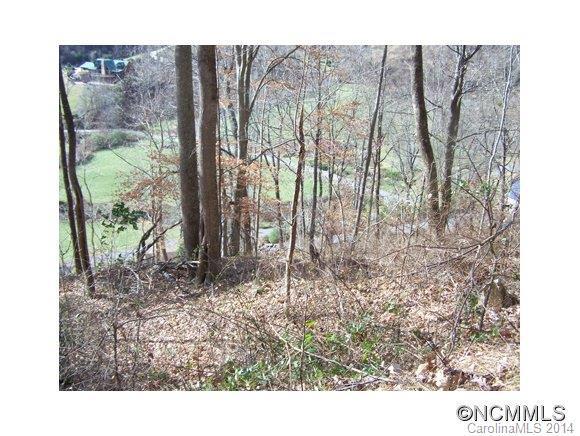 Lot 61 Turkey Run Drive #61, Mars Hill, NC 28754 (#NCM574394) :: SearchCharlotte.com