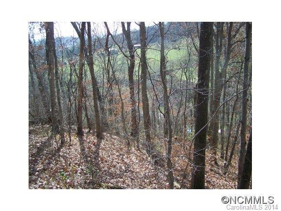 Lot 63 Turkey Run Drive #63, Mars Hill, NC 28754 (#NCM574403) :: Stephen Cooley Real Estate Group