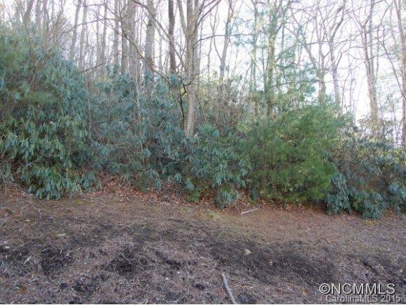 LOT 12 Heather Marie Drive #12, Hendersonville, NC 28792 (#NCM576235) :: Exit Mountain Realty