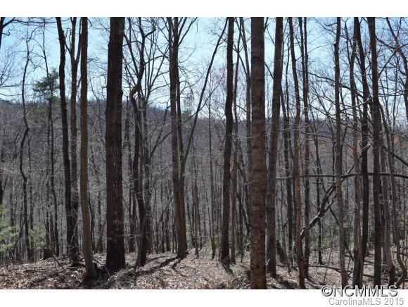 30 Overlook Drive #30, Saluda, NC 28773 (#NCM580593) :: Exit Mountain Realty