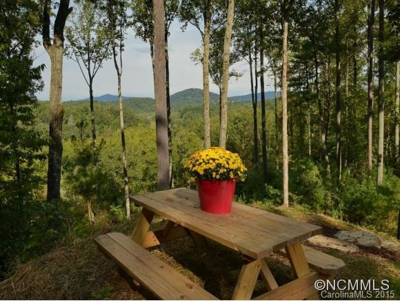 0 French Broad Overlook, Arden, NC 28704 (#NCM587091) :: RE/MAX Four Seasons Realty
