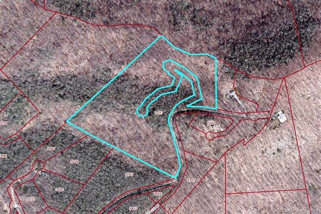 99999 Woodburn Drive, Swannanoa, NC 28778 (#3119979) :: Johnson Property Group - Keller Williams