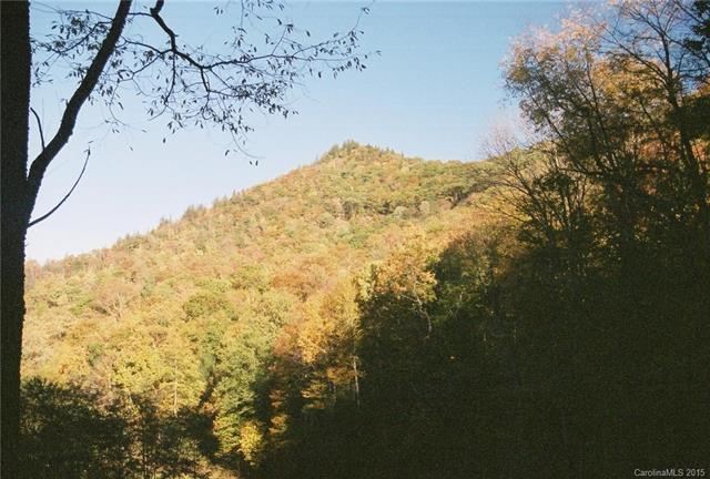 Lot 205 Chickadee Lane #205, Maggie Valley, NC 28751 (#3120785) :: Puffer Properties