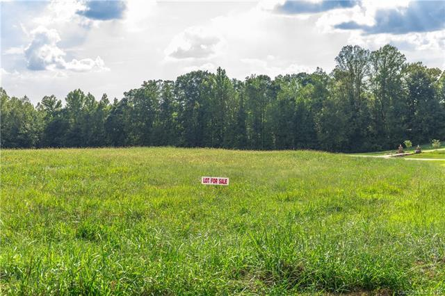 Lot 17 New Salem Road #17, Statesville, NC 28625 (#3133899) :: Exit Realty Vistas