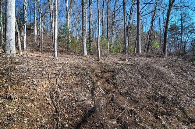 110 Buffalo Trail #10, Asheville, NC 28805 (#3141269) :: Rinehart Realty