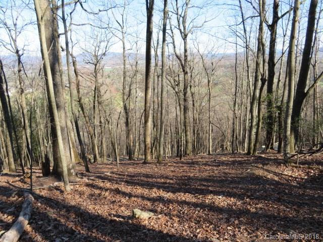 15 Wild Dogwood Trail Lot #80, Mills River, NC 28759 (#3160361) :: LePage Johnson Realty Group, LLC