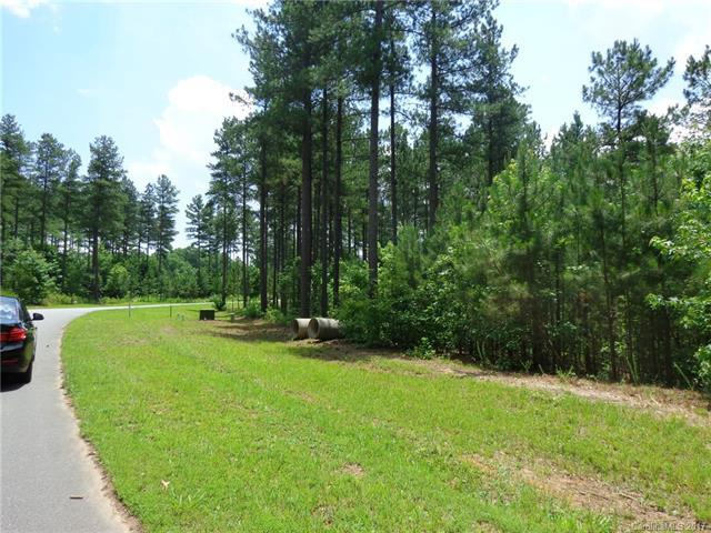 66 Taylor Made Drive #66, Statesville, NC 28677 (#3179602) :: Exit Mountain Realty