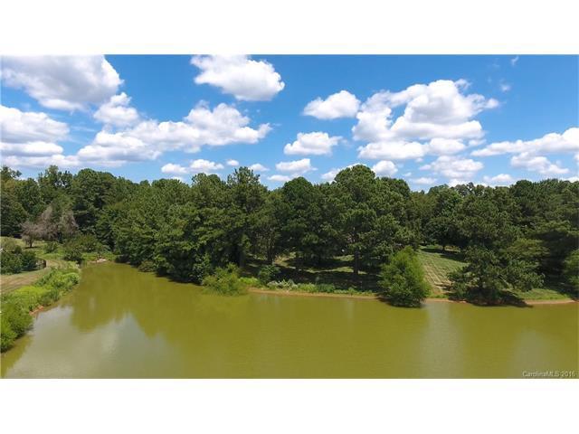 1586 Randle Court, Rock Hill, SC 29732 (#3180006) :: LePage Johnson Realty Group, LLC