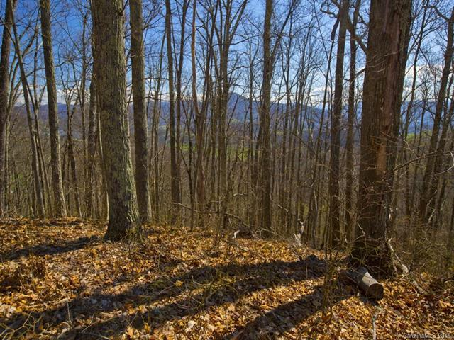Lot #12 Signature Row Boulevard #12, Waynesville, NC 28785 (#3192585) :: Keller Williams Professionals