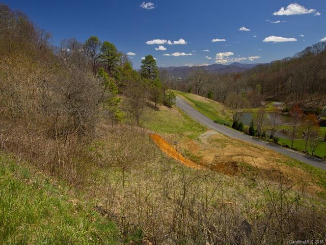 Lot #37 Sleepy Hollow Drive #37, Waynesville, NC 28785 (#3195685) :: LePage Johnson Realty Group, LLC