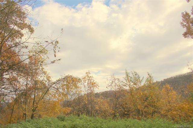 TBD White Oak Way, Hot Springs, NC 28743 (#3219021) :: Puffer Properties