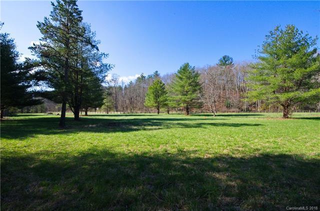 81 & 105 Gap Creek Road, Fletcher, NC 28732 (#3252058) :: Cloninger Properties