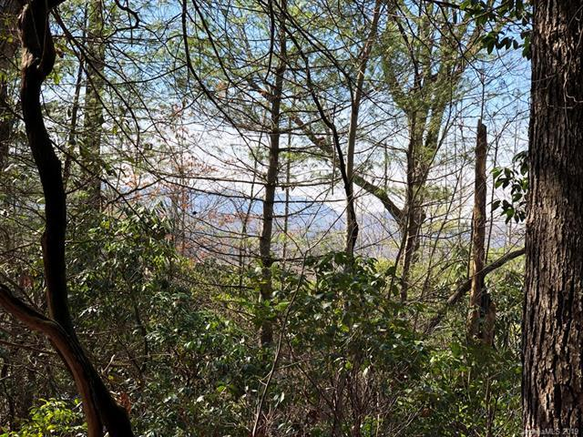 129 Falls Summit Lane - Photo 1