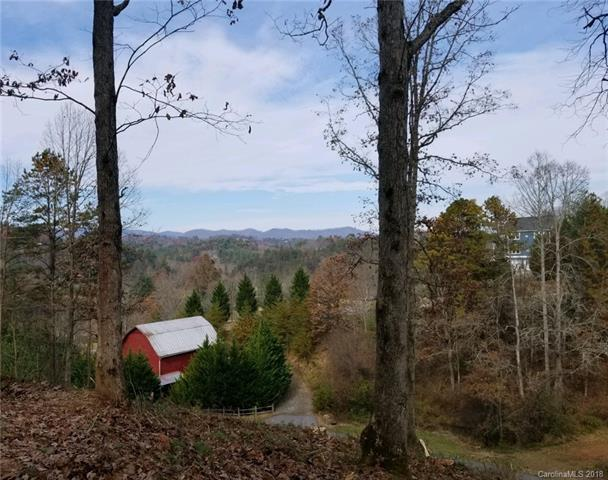 65 Timber Ridge Circle Lot 20, Leicester, NC 28748 (#3268576) :: Besecker Homes Team