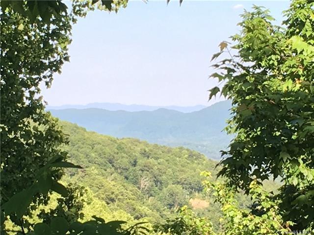 28 Berry Lane C-11, Black Mountain, NC 28711 (#3282897) :: Exit Mountain Realty