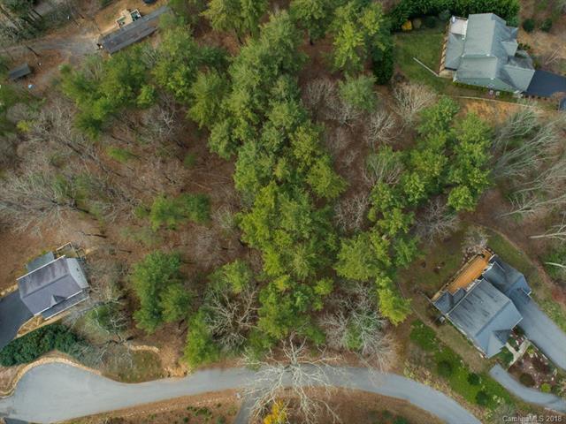 9999 Kings Ridge, Asheville, NC 28804 (#3285336) :: High Performance Real Estate Advisors