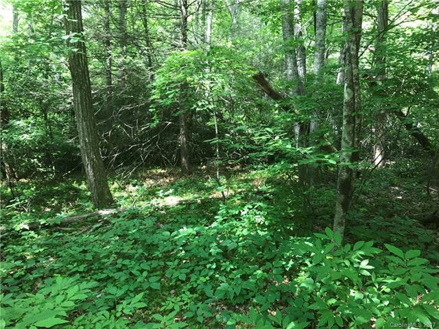 000 Woodland Trail - Photo 1