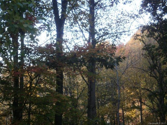 Lot 18, 19 Magnolia Way Lot 18, 19, Waynesville, NC 28786 (#3312240) :: Cloninger Properties