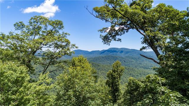 9999 Lower Flat Creek Road #01, Black Mountain, NC 28711 (#3315243) :: The Temple Team