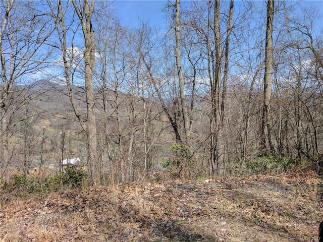 Lot #19 Flowing Hills Drive #19, Clyde, NC 28721 (#3317362) :: Besecker Homes Team