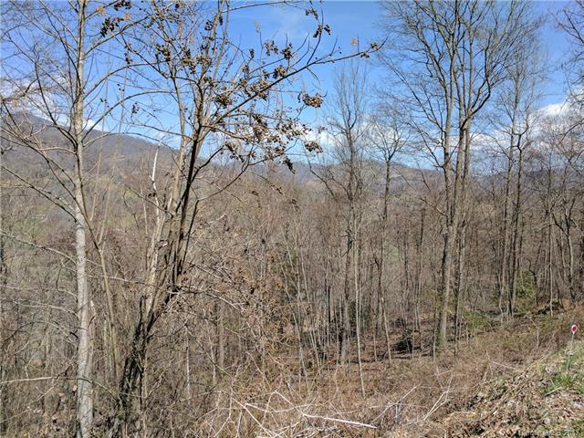 Lot #20 Winfield Drive #20, Clyde, NC 28721 (#3317364) :: LePage Johnson Realty Group, LLC