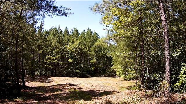 00 Contuck Lane #14, Mill Spring, NC 28756 (#3319238) :: Caulder Realty and Land Co.