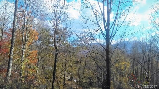 00 Forest Valley Road, Sylva, NC 28779 (#3331232) :: Exit Mountain Realty