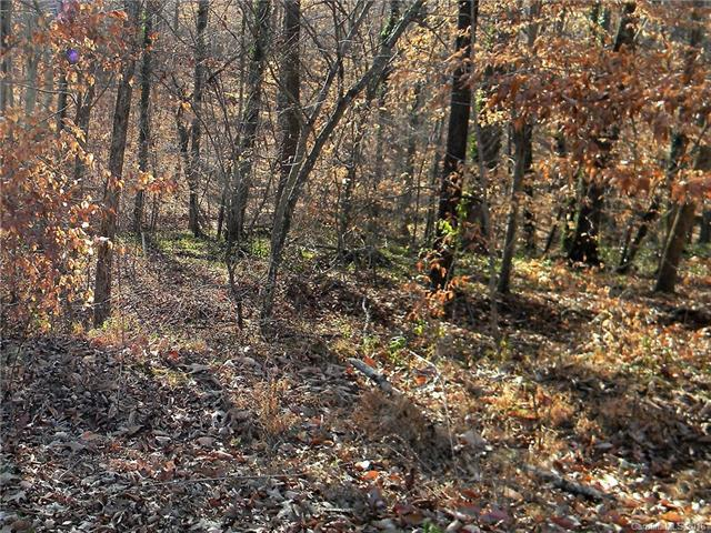 573 Hickory Wood Drive, Kannapolis, NC 28083 (#3348789) :: LePage Johnson Realty Group, LLC