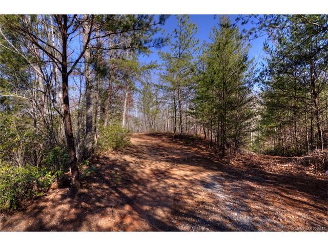 184 Rock Ridge, Lake Lure, NC 28746 (#3351131) :: LePage Johnson Realty Group, LLC